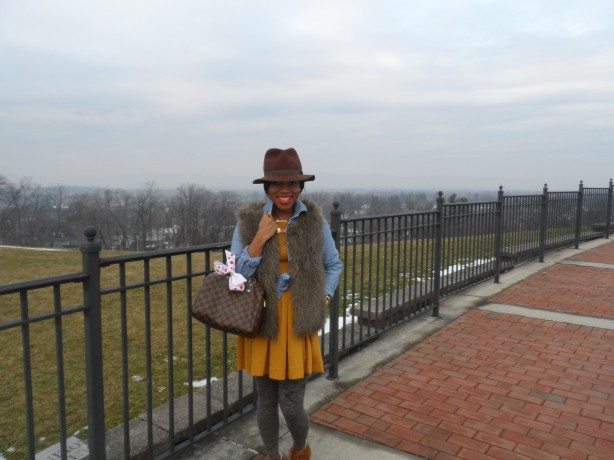 wearing-h&m-mustard-skater-dress-j.crew-factory-faux-fur-vest-minnetonkas-louis-vuitton-speedy-25-channing-hargrove-blog-channing-in-the-city-3